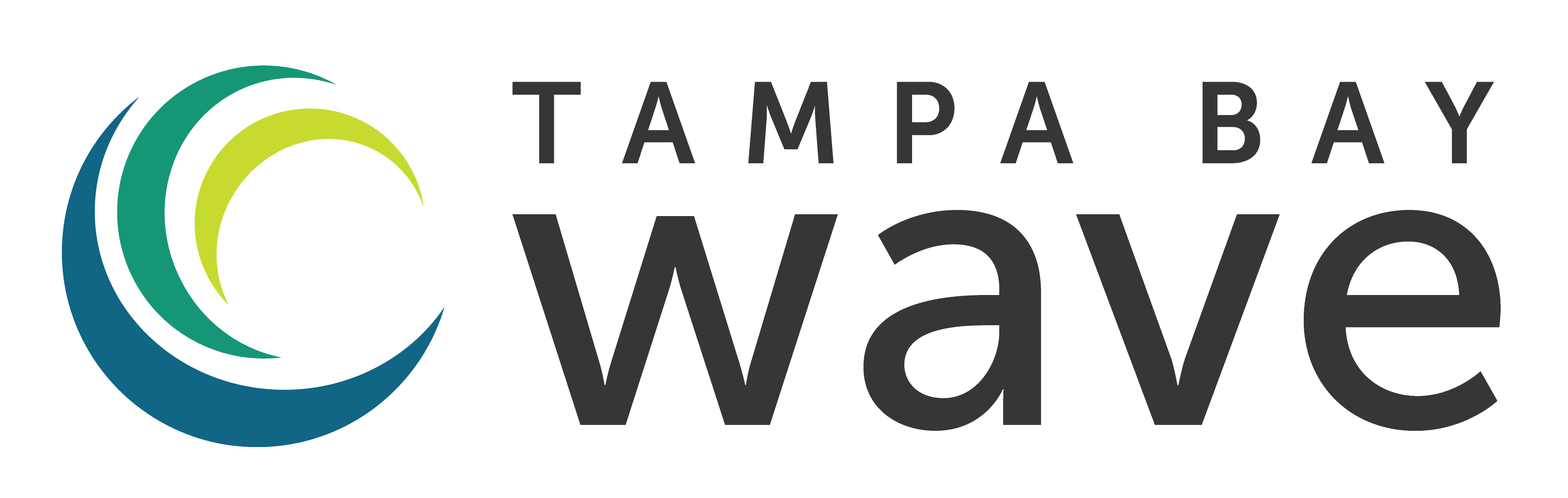 Logo for Tampa Bay Wave